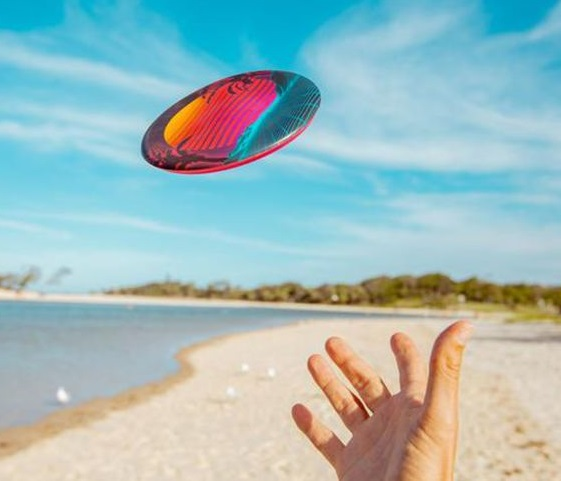 wingman flying disc toy is perfect for the beach