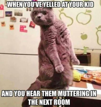 meme about shouting at your child